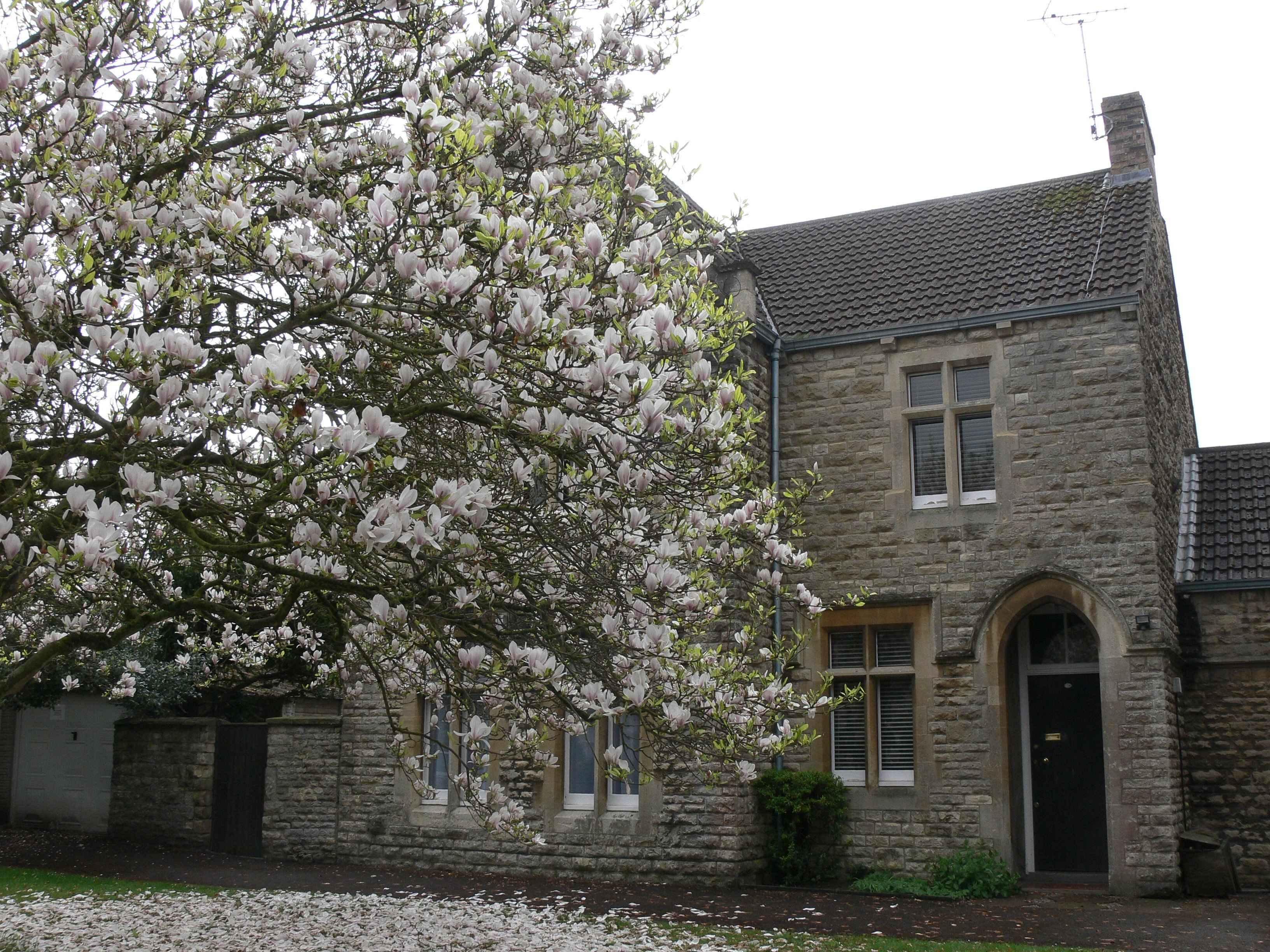 1 St Peter's Church 016