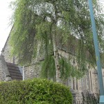 1 St Peter's Church 154
