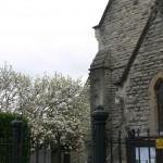 1 St Peter's Church 159